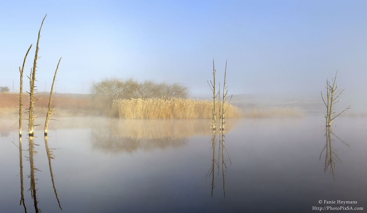 Mist on Arpa Dam with dead Tree Relection on the Water